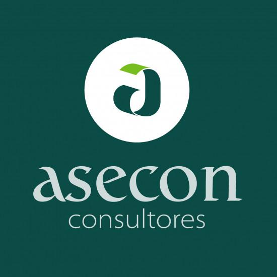 ASECON CONSULTORES